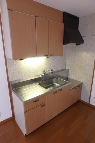 サンハイム日永田 / 203号室キッチン