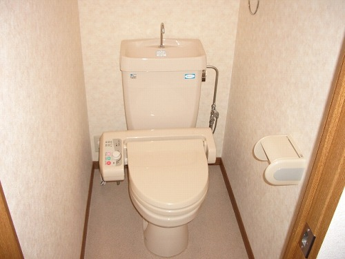 フレア・クレスト水城 / 603号室トイレ
