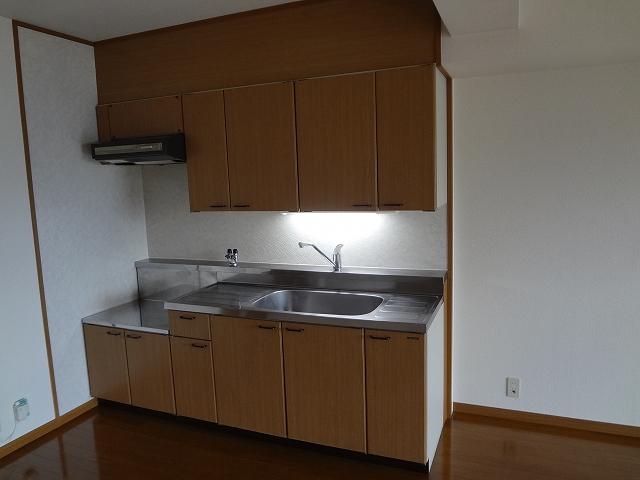 マンテンビュー / 304号室キッチン