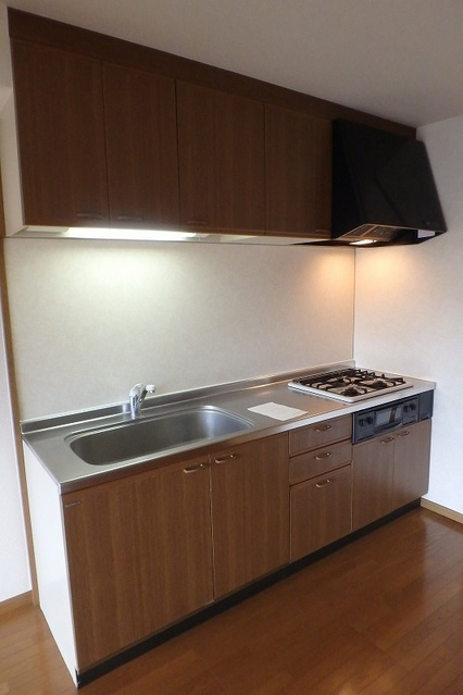 グランドアビタシオン村上 / 301号室キッチン