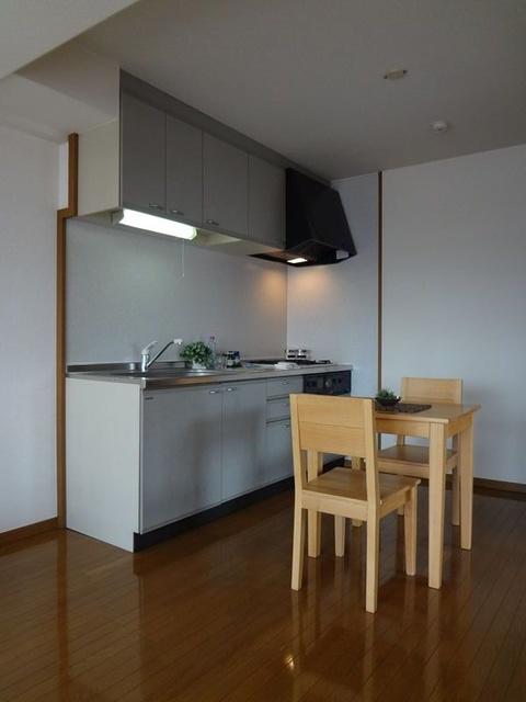グランドアビタシオン村上 / 501号室キッチン