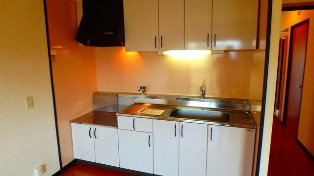 クレールマノワール / 101号室キッチン