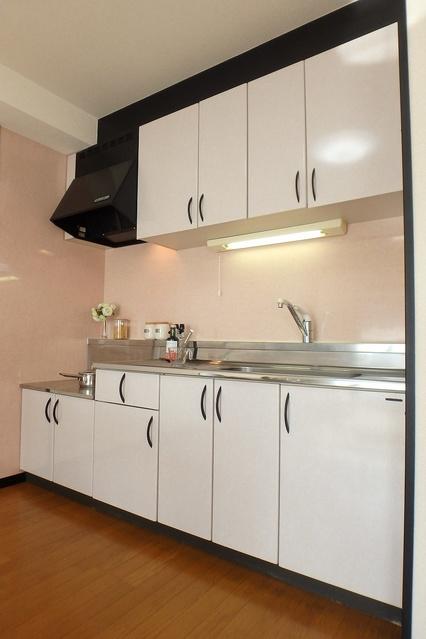 クレールマノワール / 203号室キッチン