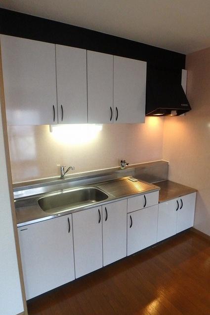 シーラ・プラッツ / 403号室キッチン
