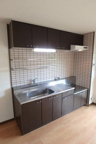 シュロス大谷 / 402号室キッチン