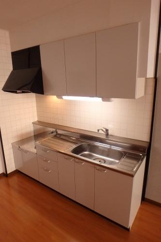 伯玄オーシャンハイツ / 205号室キッチン
