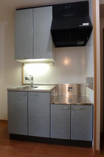 ソフィアパレス / 102号室キッチン