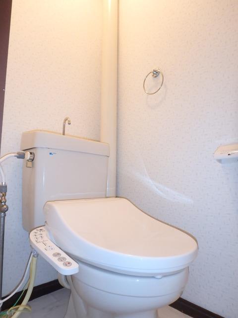 サンハイツ森山 / 102号室トイレ