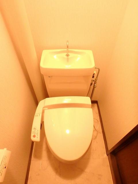 サンハイツ森山 / 401号室トイレ