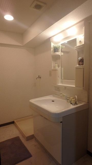 レスピーザⅡ / 303号室洗面所