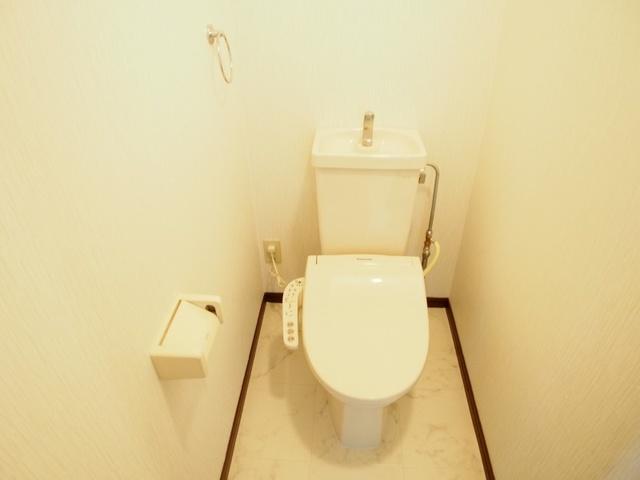 レスピーザⅡ / 308号室トイレ