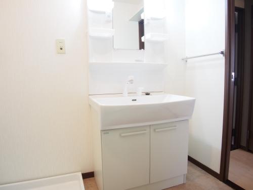 レスピーザⅡ / 401号室洗面所