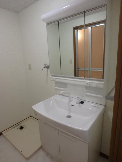 ルミエール東大利 / 103号室洗面所