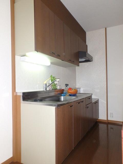 FIRENZE'95(フィレンツェ95) / 201号室キッチン