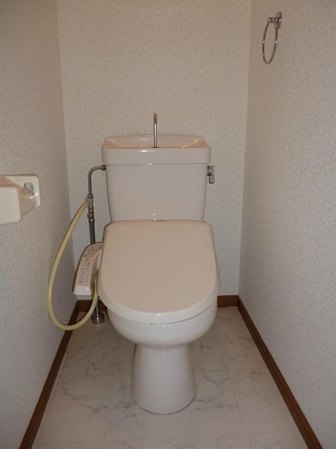 シャルム大野城 / 203号室トイレ