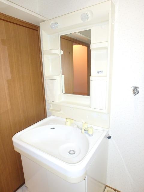フローラルハイツ / 403号室洗面所
