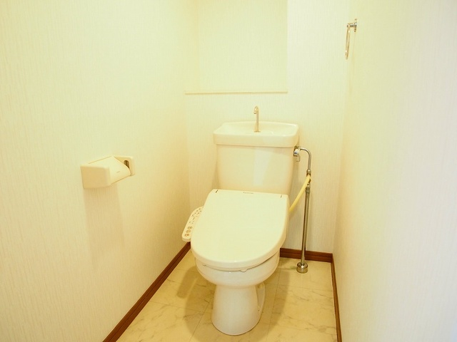 フェニックス大野城 / 301号室トイレ
