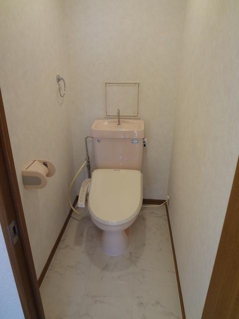 マーメゾン / 401号室トイレ