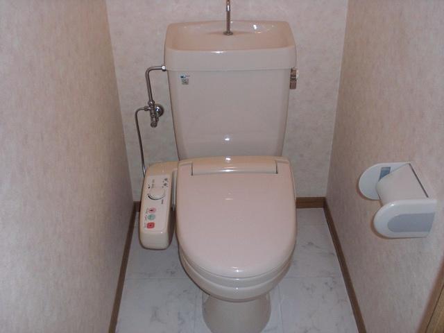 グランピア若草 / 401号室トイレ