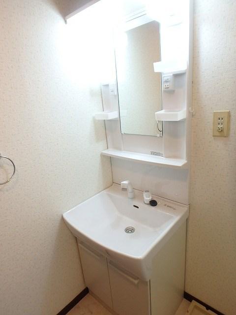 サンハイツ森山 / 305号室洗面所