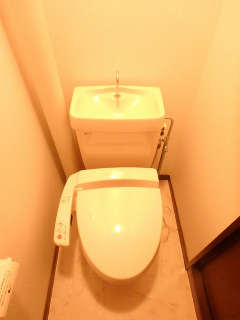 サンハイツ森山 / 405号室トイレ