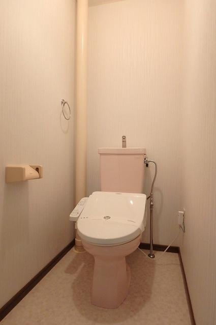 セントラルハイツ / 102号室トイレ