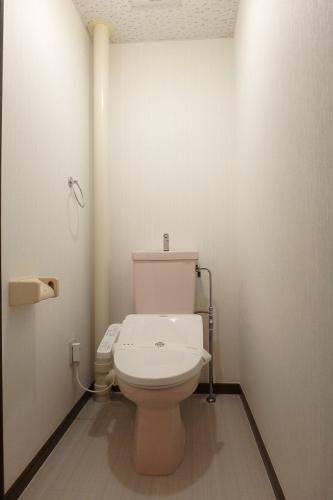 セントラルハイツ / 103号室トイレ