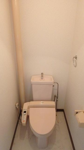 セントラルハイツ / 201号室トイレ