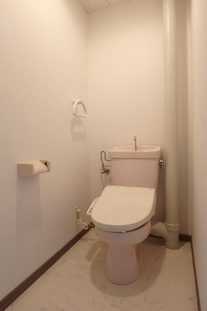 Cityハイツ山田 / 303号室トイレ