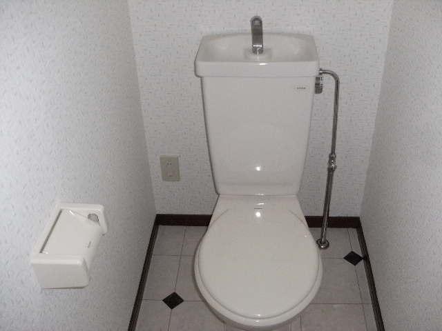レスピーザⅡ / 303号室トイレ