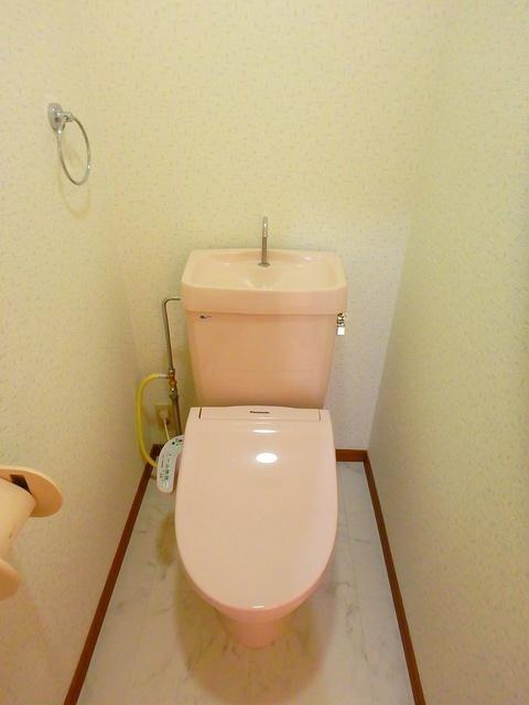 ルミエール東大利 / 303号室トイレ