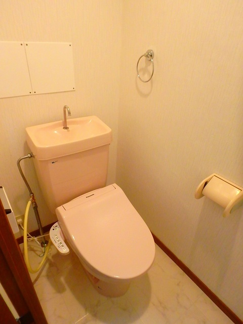ルミエール東大利 / 402号室トイレ