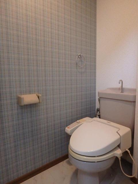 ホワイトヴィラ / 101号室トイレ