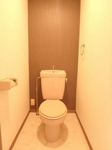 ホワイトヴィラ / 105号室トイレ