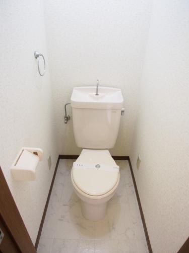 ベルハイツ / 208号室トイレ