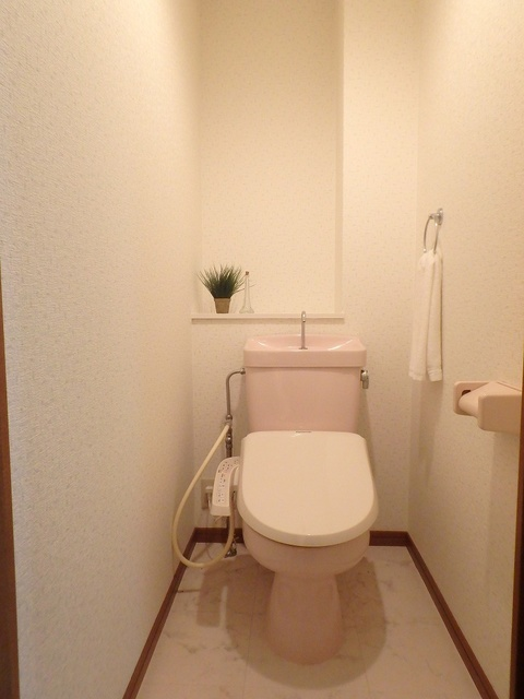 FIRENZE'95(フィレンツェ95) / 201号室トイレ