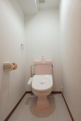 マーメゾン / 301号室トイレ