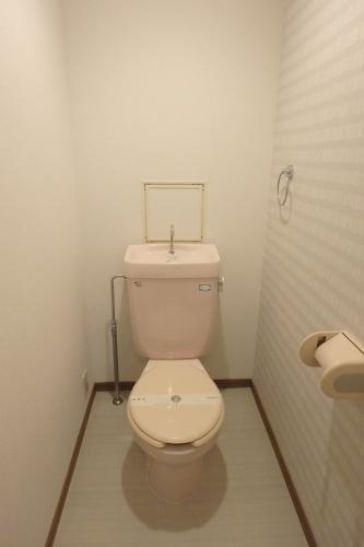 マーメゾン / 402号室トイレ