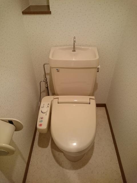 グランドアビタシオン村上 / 101号室トイレ
