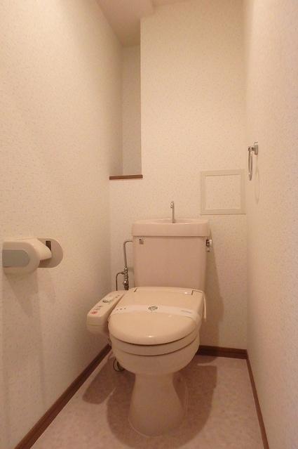 グランドアビタシオン村上 / 303号室トイレ