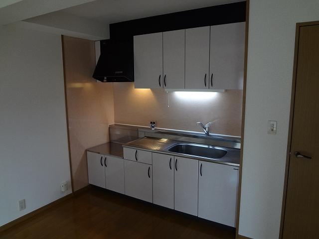 シーラ・プラッツ / 202号室キッチン