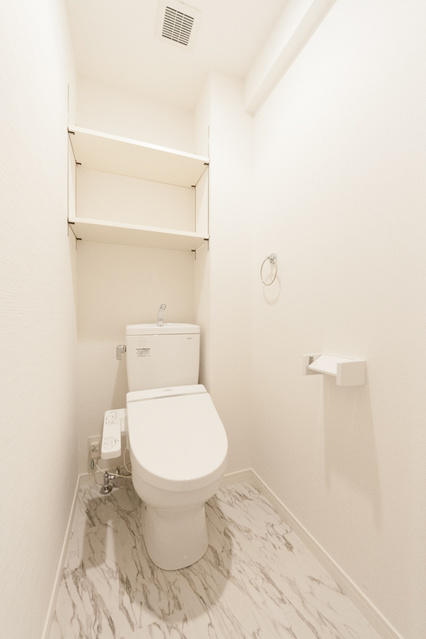 ※グランドラインⅡ / 305号室トイレ