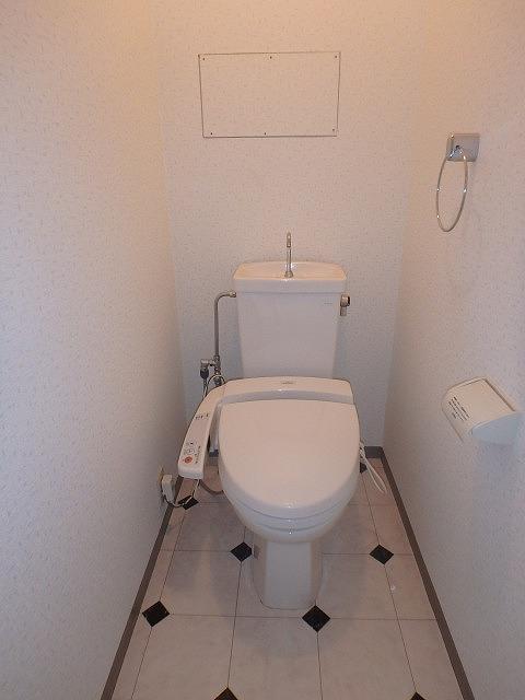 レスピーザ53 / 707号室トイレ