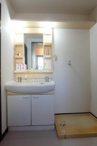 フレグランス20 / 103号室洗面所