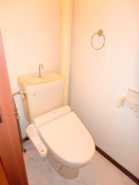 サンハイツ森山 / 302号室トイレ