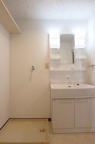 エクセレント中嶋 / 103号室洗面所