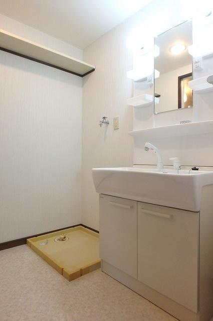 セントラルハイツ / 102号室洗面所