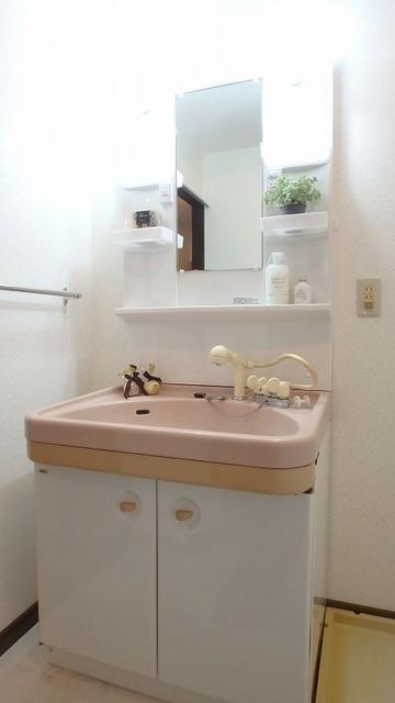 セントラルハイツ / 201号室洗面所