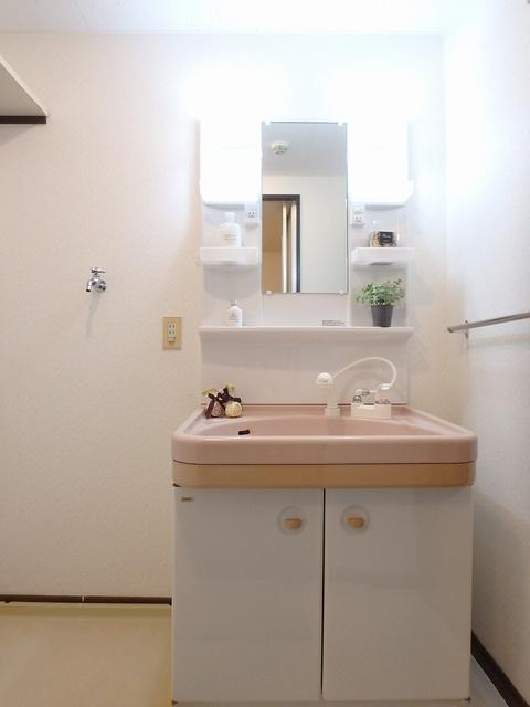セントラルハイツ / 202号室洗面所