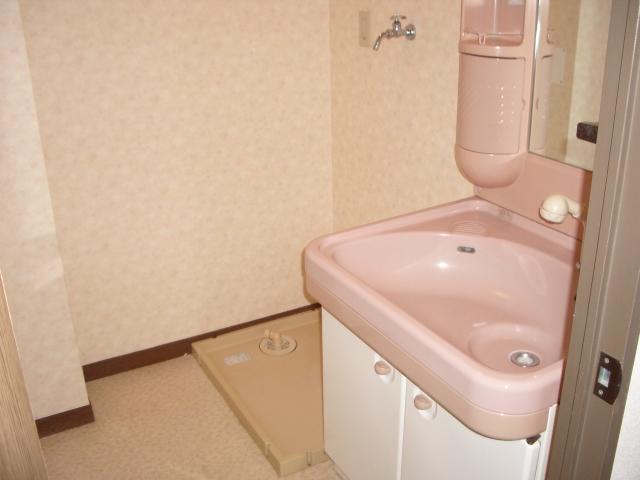 サンシャトーレ日永田 / 303号室洗面所